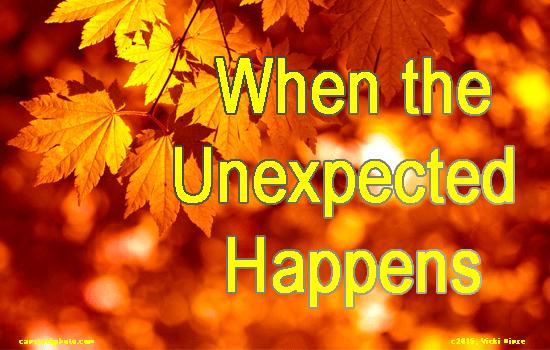 Vicki Hinze, When the Unexpected Happens