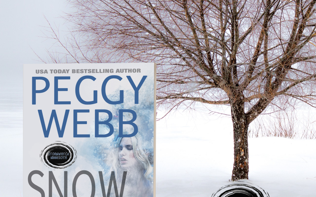The Storm Slams Minnesota in Peggy Webb's SNOW BRIDES
