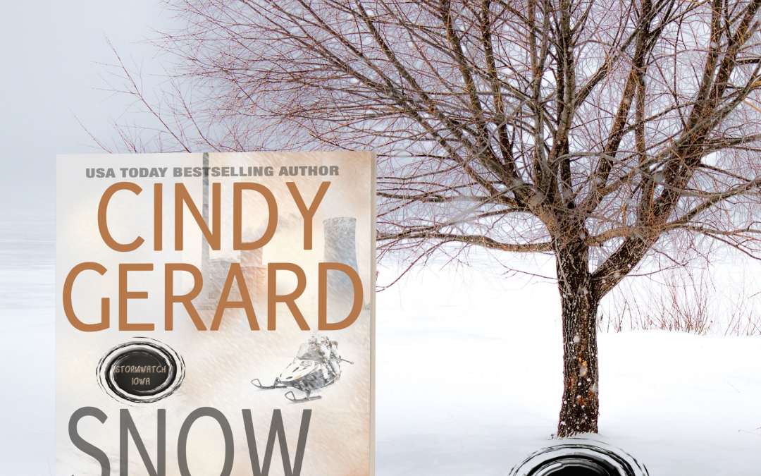 The Storm Rips into Iowa in Cindy Gerard's SNOW BLIND…
