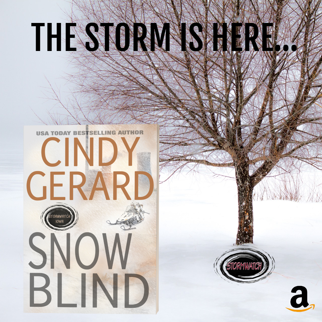 Cindy Gerard, SNOW BLIND, STORMWATCH, Vicki Hinze