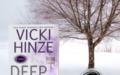 The Storm Blasts Colorado in Vicki Hinze's Deep Freeze!