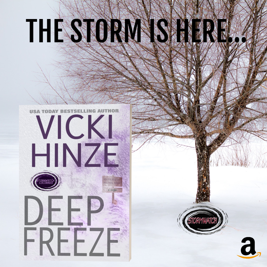 Deep Freeze, Stormwatch, Vicki Hinze