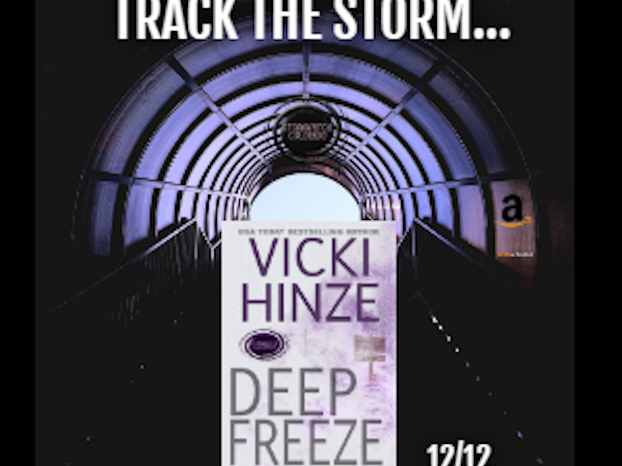 Why Vicki Hinze Wrote Deep Freeze in the Stormwatch Series