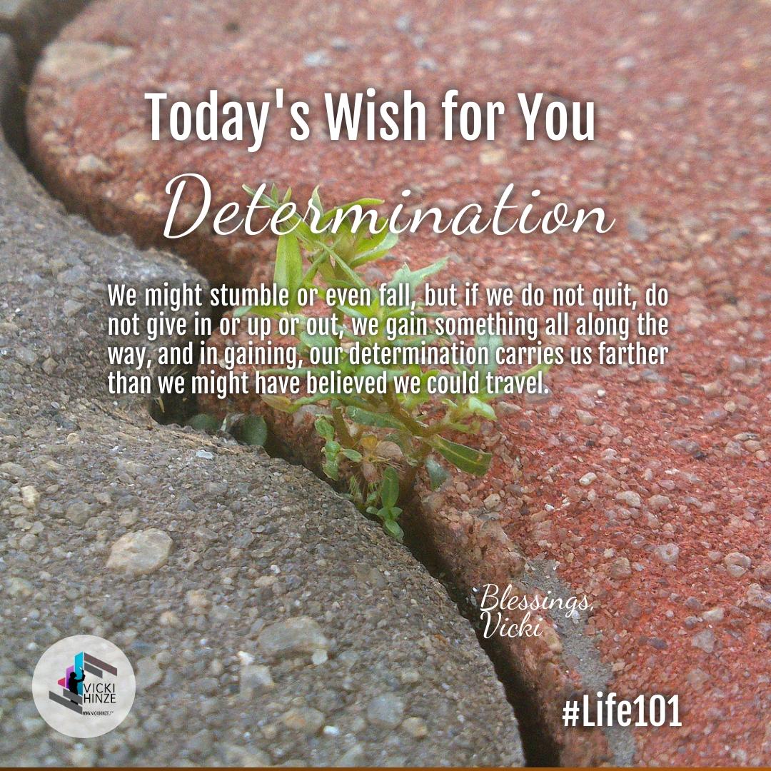 Determination, wishes, vicki hinze