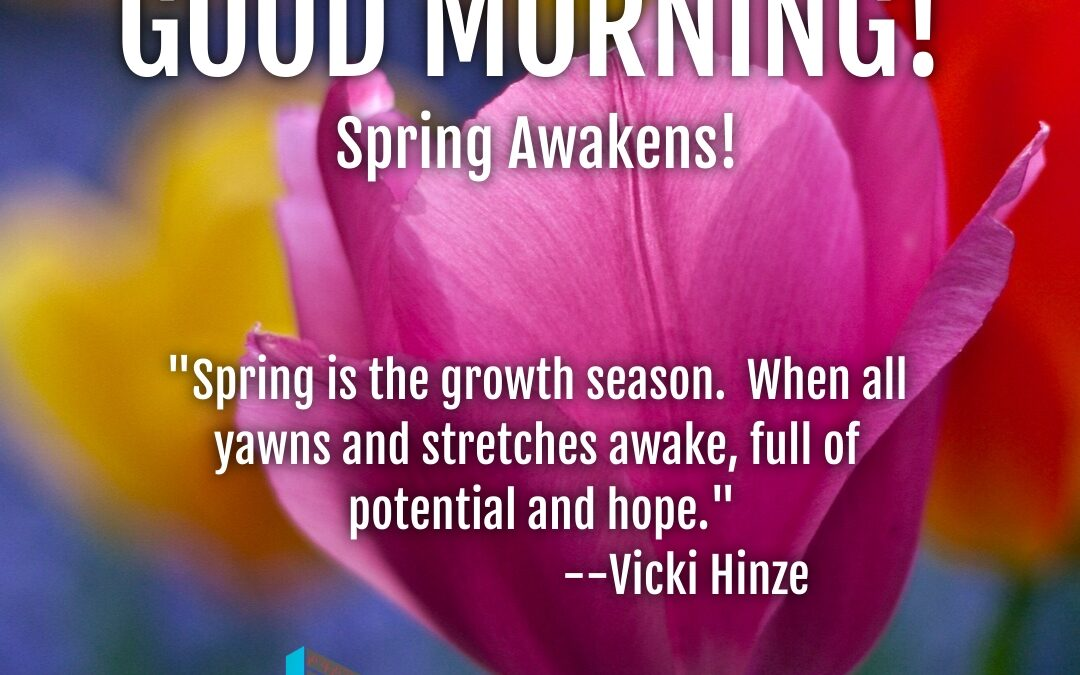 Good Morning: Spring Awakens!