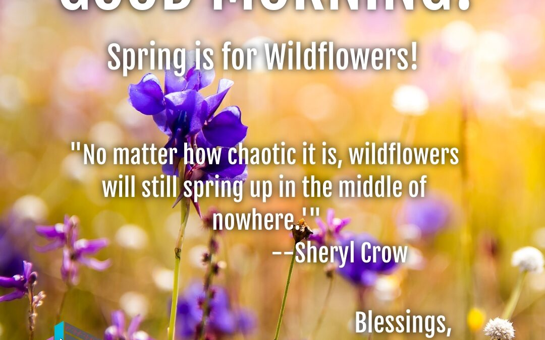 Good Morning:  Spring is for Wildflowers!