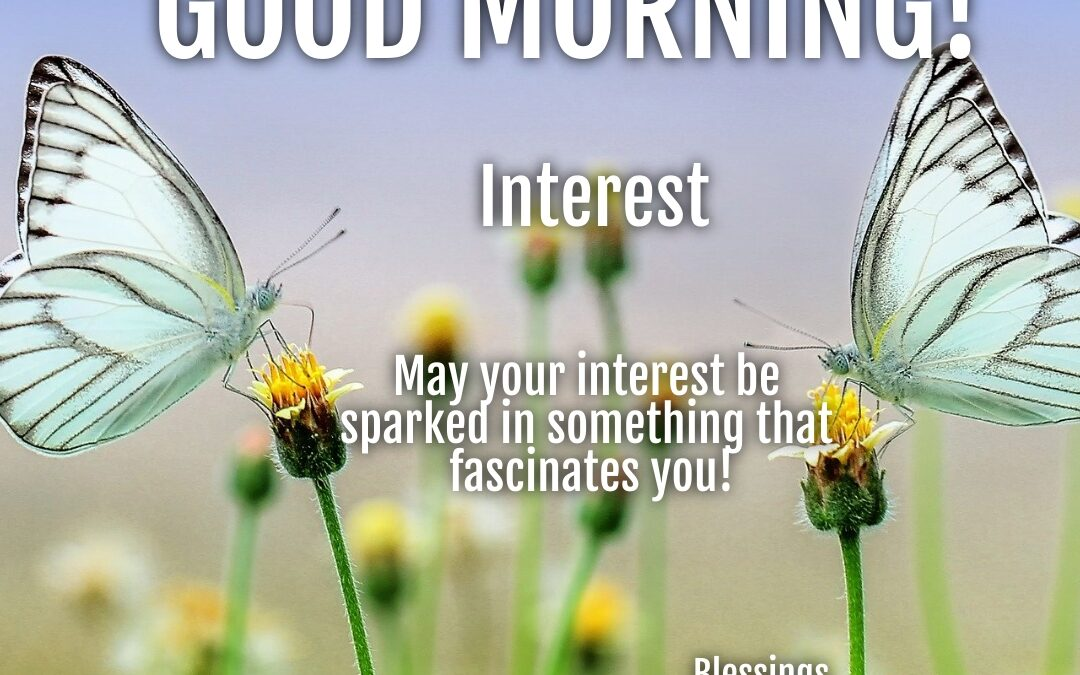 Morning Wish:  Interest