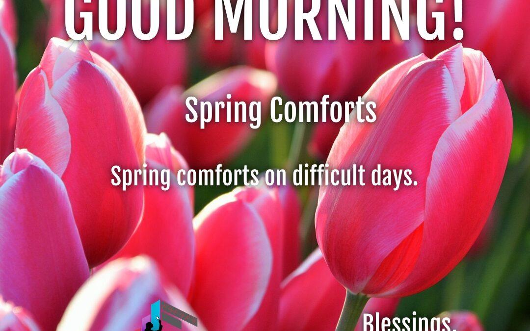 Good Morning:  Spring Comforts
