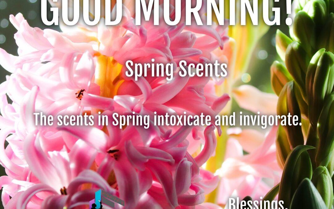 Good Morning:  Spring Scents