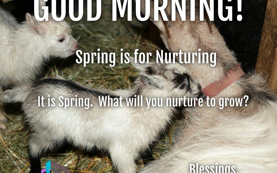 Good Morning: Spring is for Nurturing