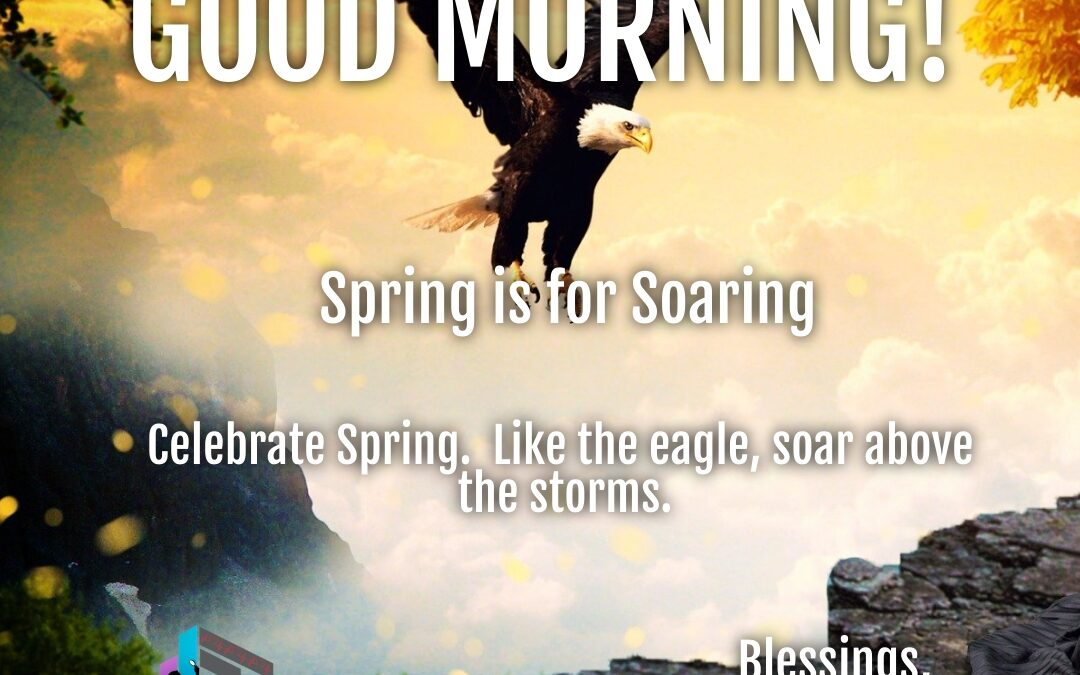 Good Morning:  Spring is for Soaring